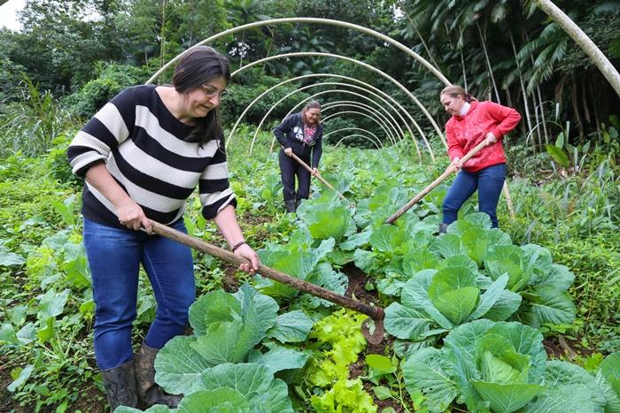 Série Riqueza Rural encerra evidenciando o trabalho da mulher no campo | Foto: Eduardo Montecino/ OCP News