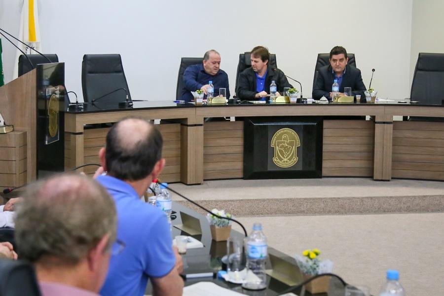 Pedido de vistas do vereador Ademar Winter (PSDB) foi concedido pelo presidente da Casa, Anderson Kassner (PP) | Foto Eduardo Montecino/OCP News