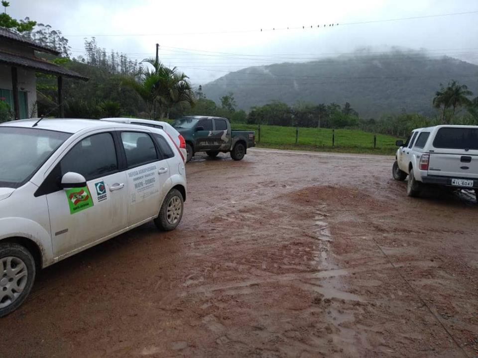 Operação foi realizada na última quinta-feira (25) | Foto Divulgação/OCP News