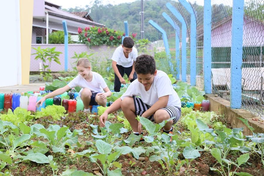 Crianças do 4º ano são responsáveis por manutenção da horta na escola | Foto: Eduardo Montecino