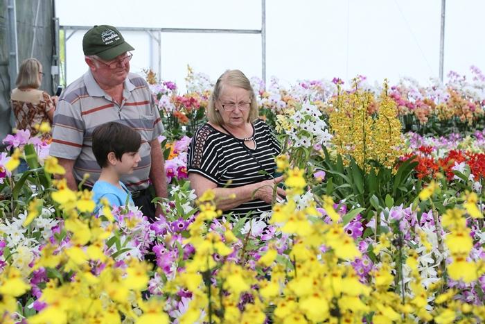 Rute Georg foi com o marido e o neto conhecer a feira e adquirir algumas plantas   Foto: Eduardo Montecino/OCP News