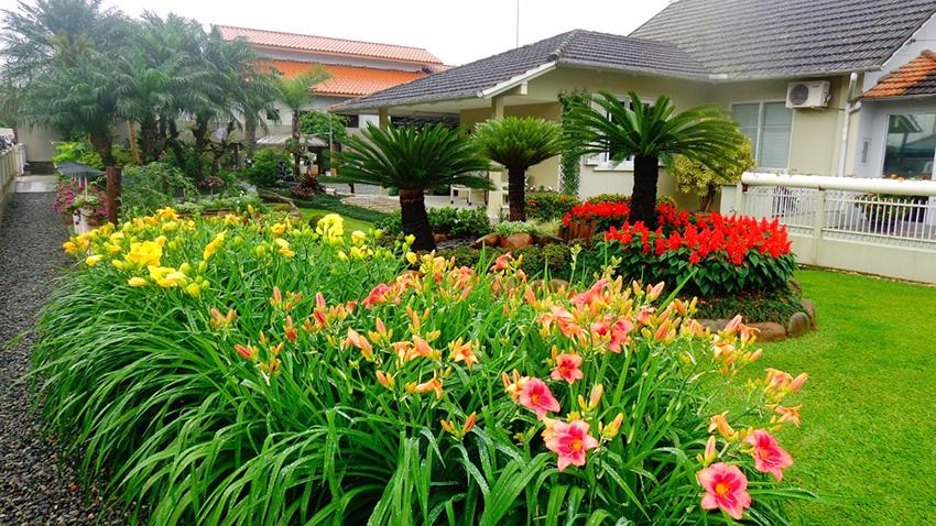Quesitos analisados serão harmonia, manutenção, recursos paisagísticos, vigor, estado das plantas e dimensão do jardim | Foto Divulgação Arquivo/Prefeitura de Joinville