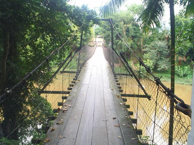 A ponte pênsil do bairro Baependi foi inaugurada em 1971 | Foto Arquivo Histórico de Jaraguá do Sul