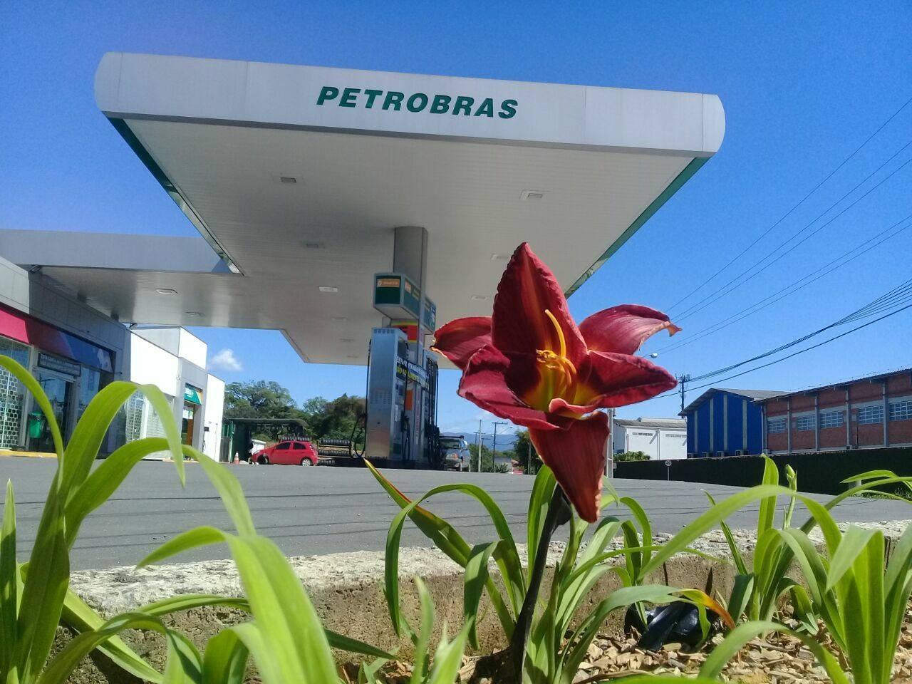 O intuito de campanha é esclarecer a situação que os revendedores enfrentam diante do alto valor de impostos embutidos nos combustíveis, principalmente na Gasolina e o Diesel   Foto Divulgação Sindipetro