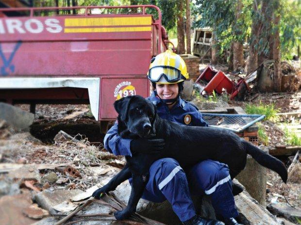 Amizade e parceria. Os binômios catarinenses (dupla de bombeiro militar e cão) são destaque na missão de Brumadinho | Fotos Divulgação Governo do Estado